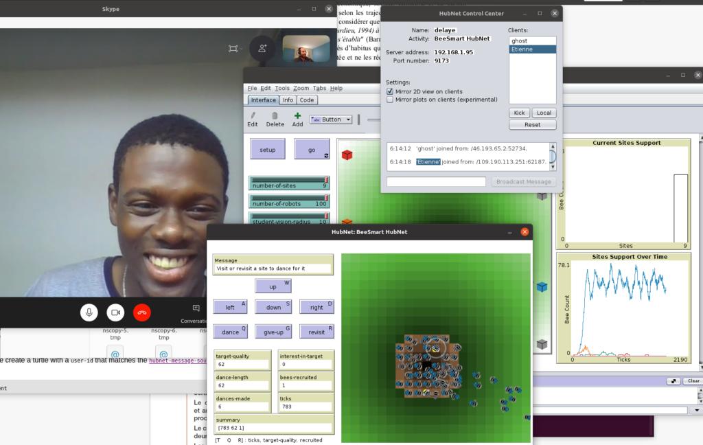 Netlogo Hubnet fonctionnant sur internet